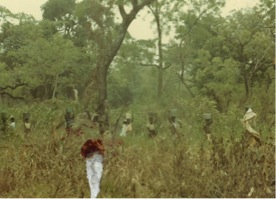 Figure 2. School-going children carrying buckets of water from the stream through the bushes to their homes for domestic usage